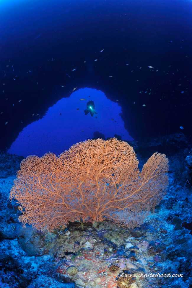 Our Top ten technical diving sites in the Red Sea